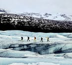 On a glacier hike you don't only admire the glacier itself but also its surrounding nature.