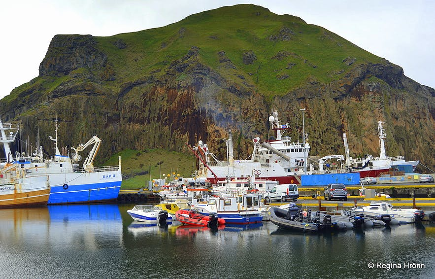 A modern-day Viking - the Heroic Deed of the Fisherman Guðlaugur Friðþórsson in the Westman Islands
