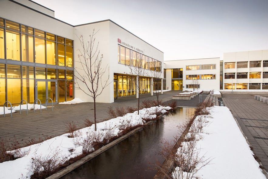阿克雷里大学位于冰岛北部首都