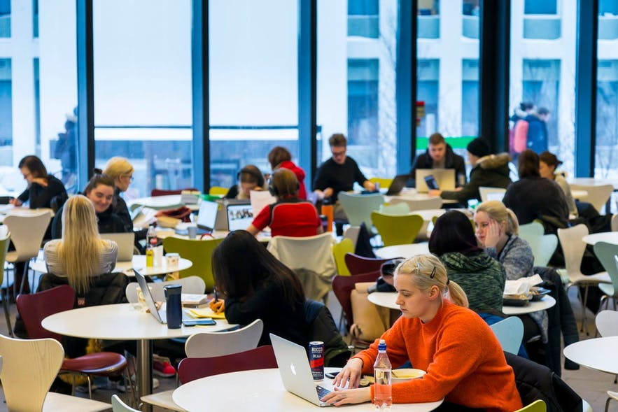 Students studying at the University of Iceland.