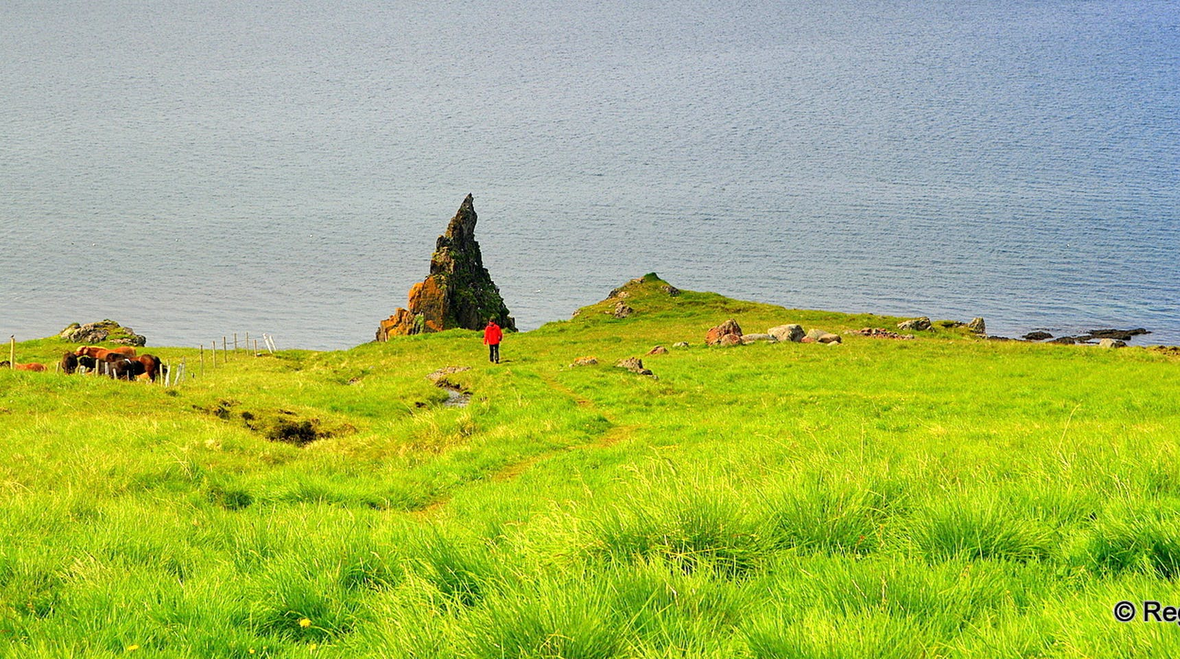 The Majestic Hvitserkur Sea Stack The Troll Of North We