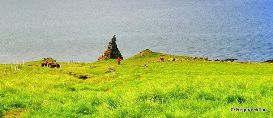 The majestic Hvítserkur Sea Stack - the Troll of North-West Iceland