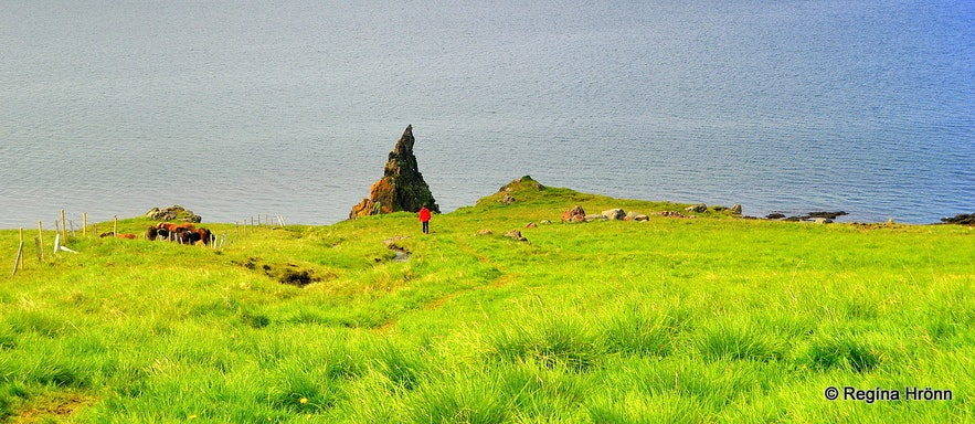 Ánastaðastapi rock on Vatnsnes peninsula