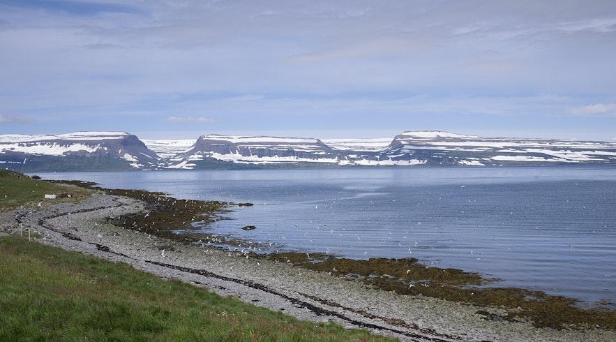 冰岛西峡湾Vigur小岛