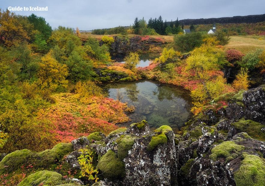 Þingvellir National Park during the summertime in Iceland.