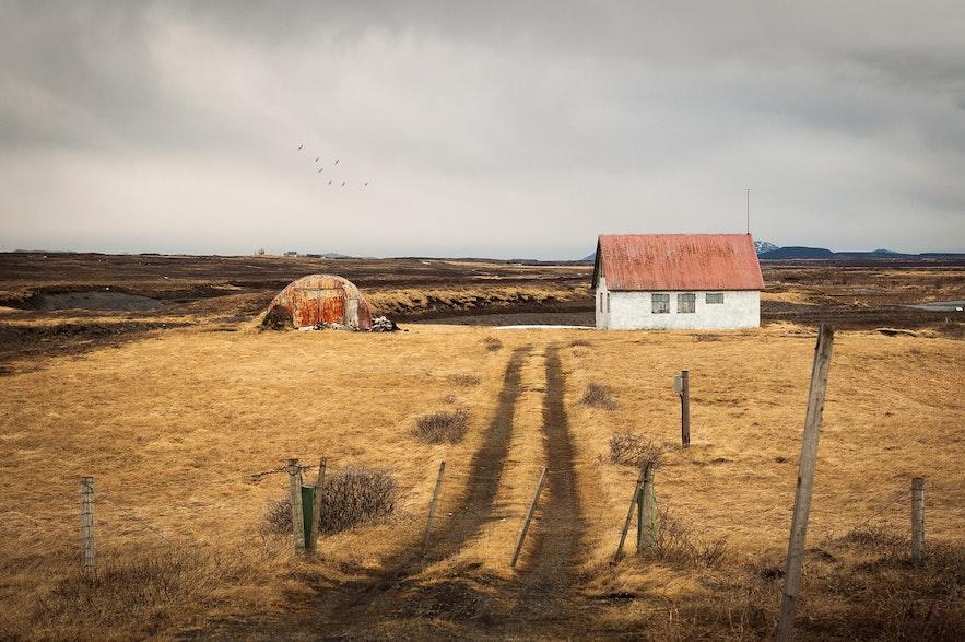 蕭瑟的冰島秋季景色