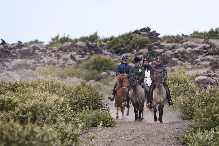 在馬背上體驗冰島
