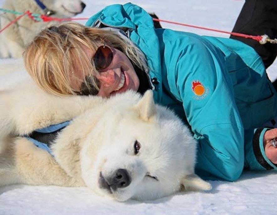 冰島雪橇犬之旅