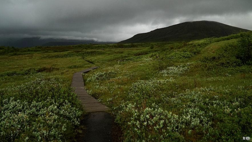 Sentier de Morsárdalur à Skaftafell