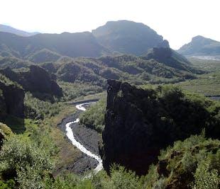 片道バス ソゥルスモルク渓谷からレイキャビクへ