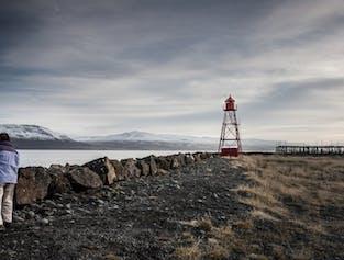 Arctic Coastline & Micro Brewery | Black Sand Beach & Beer Tasting