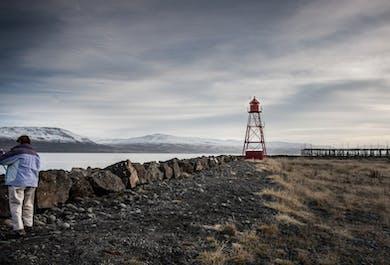 Arctic Coastline & Micro Brewery   Black Sand Beach & Beer Tasting