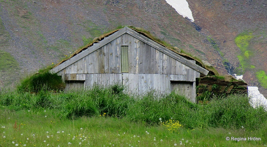 Turf outhouse in Svarfaðardalur in North-Iceland