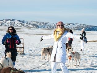Hundeschlitten-Tour   mit Golden Circle
