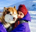 Coccola gli adorabili Husky dopo aver fatto un giro in slitta.