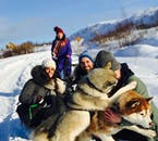 Mache ein Foto mit den Huskys nach der Schlittenfahrt bei Akureyri.