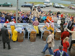 Siglufjordur Coastal Culture Tour from Akureyri
