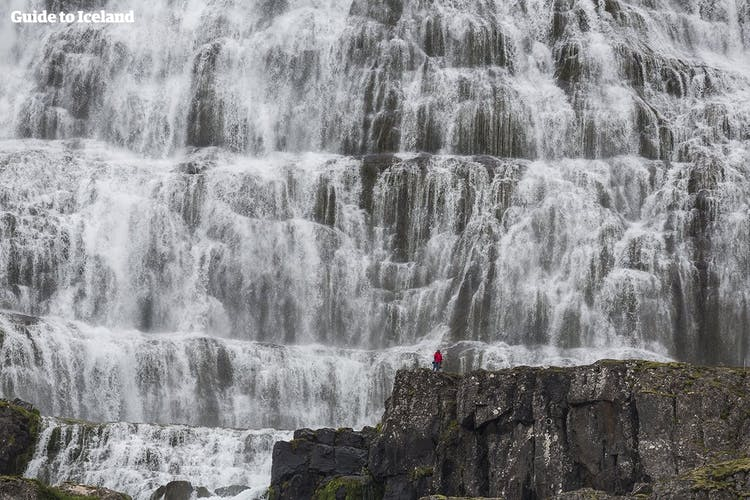 As you approach the Westfjord's Dynjandi waterfall, you'll be greeted by the thundering noises of this majestic cascade.