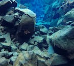 Visibility at Silfra Fissure often reaches up to 100 metres.