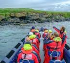 Puoi vedere molta vita marina nell'oceano al largo delle coste della città di Reykjavík.