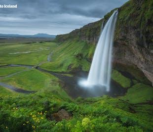 Viaje de 4 días a tu aire en verano | El Círculo Dorado y Vík