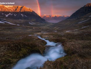 Westfjords Express Tour | Nature and Culture