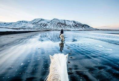 現地発|北アイスランドの大自然に触れる2時間の乗馬ツアー