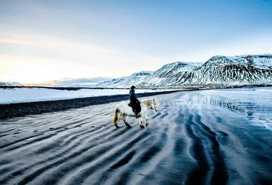Black Beaches and Rivers | Riding Tour in North Iceland