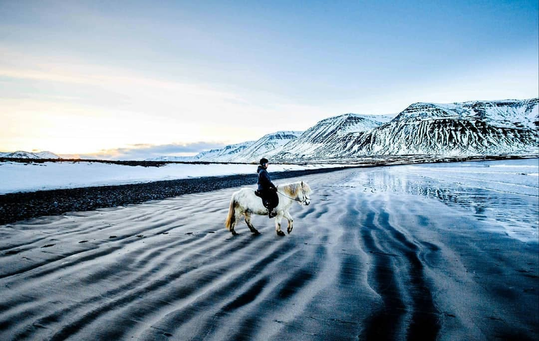 Ride on a black sand beach on an Icelandic horse with this fantastic riding tour.