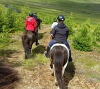 Ride through North Iceland's countryside on an Icelandic horse.