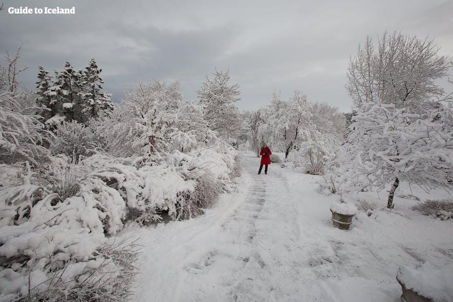 冬のアイスランド旅行には雪対策もしっかりとしたい