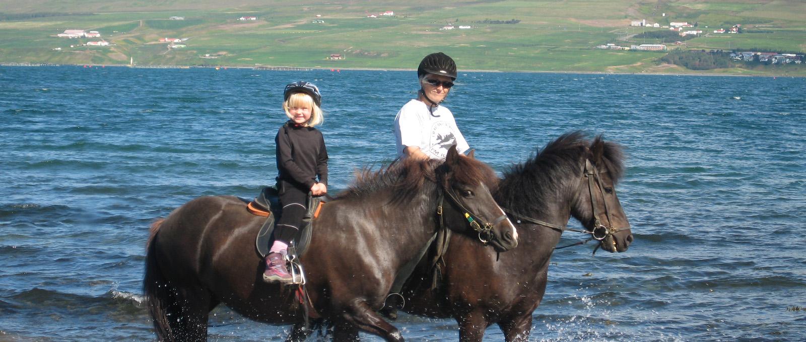 子供向けの乗馬ツアーでアイスランドの馬に触れ合える