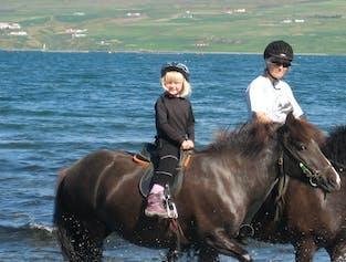 アークレイリ発 子供向けの乗馬ツアー
