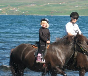 Children's Horse Riding Lesson