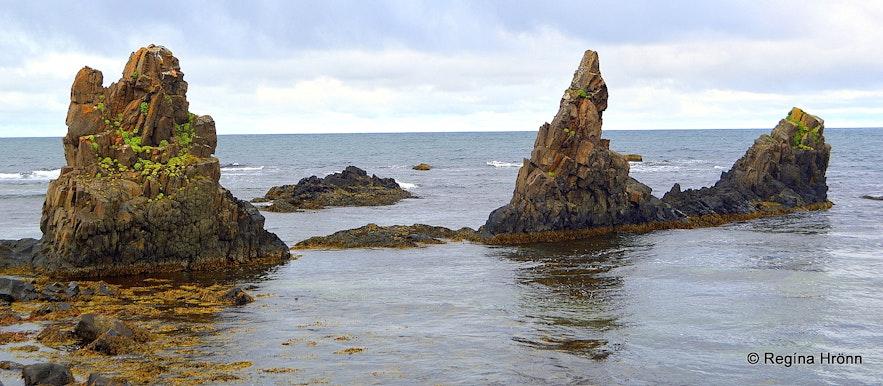 Trékyllisvík at Strandir - Árnesstapar rocks