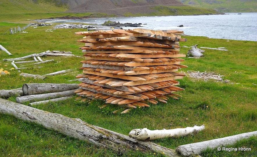 Driftwood at Strandir