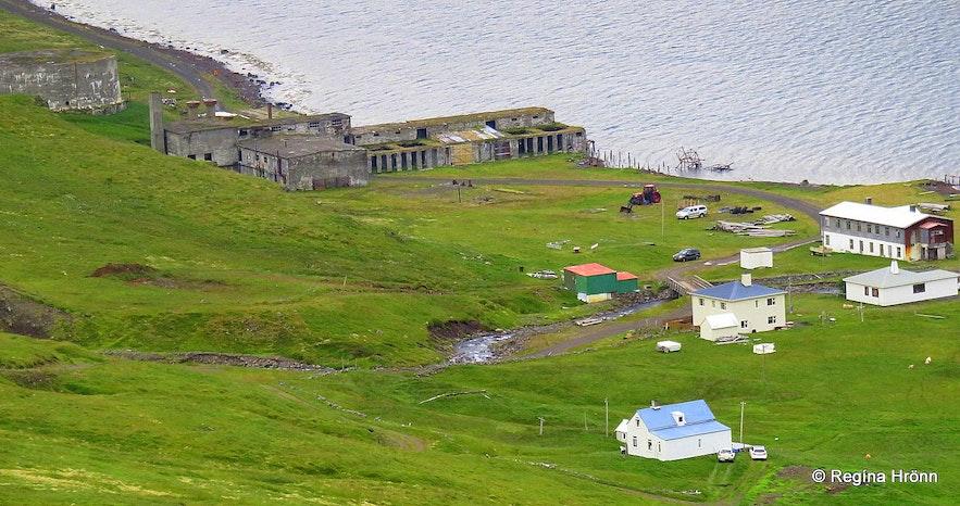 Ingólfsfjörður at Strandir