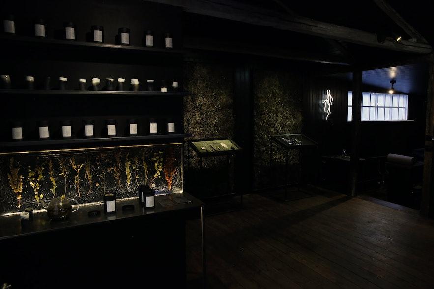 冰岛首都雷克雅未克Sigur Rós创始人Jónsi的生活方式概念店Fischer-店面陈列