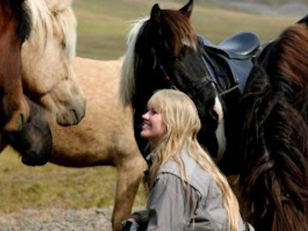 Langhús horse tours