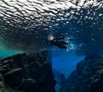 Snorkelling in Silfra fissure is a great activity for both first-time and expert snorkellers alike.