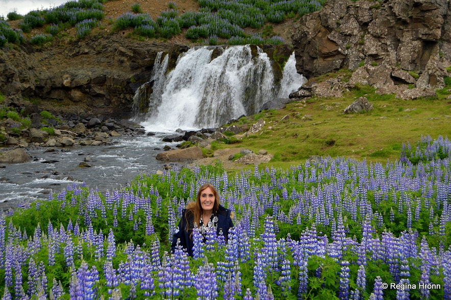 Regína by Fossárrétt in West-Iceland
