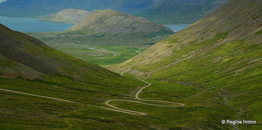 Hrafnseyrarheiði heath in the Westfjords