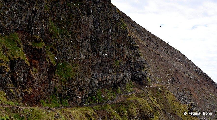 Kjaransbraut road - Svalvogavegur in the Westfjords