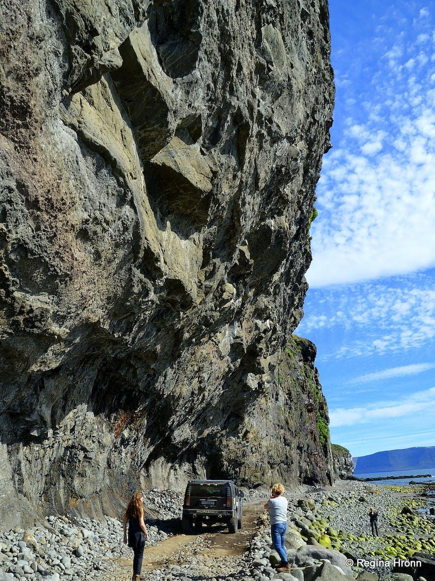 Skútabjörg cliffs in the Westfjords