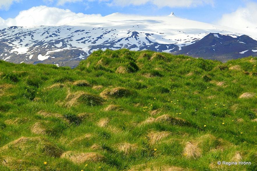Laugarbrekka Snæfellsnes and Snæfellsjökull glacier