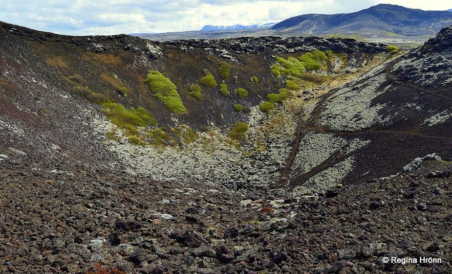 Búrfellsgjá crater SW-Iceland