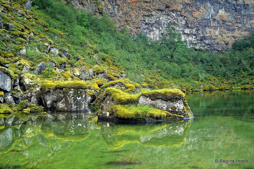 Ásbyrgi - Botnstjörn pond NE-Iceland