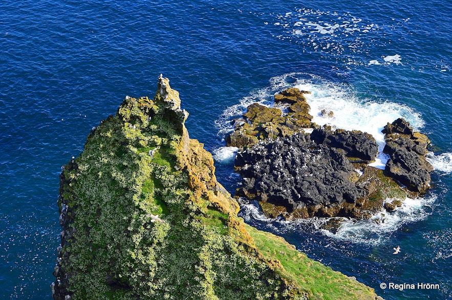 Þúfubjarg cliffs - Snæfellsnes peninsula