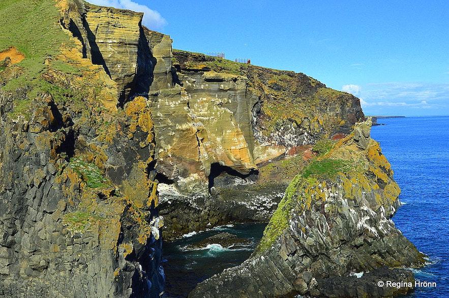Þúfubjarg cliff Snæfellsnes