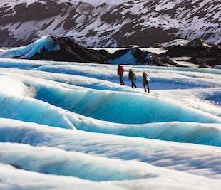 남부 해안, 빙하 하이킹 미니버스 투어